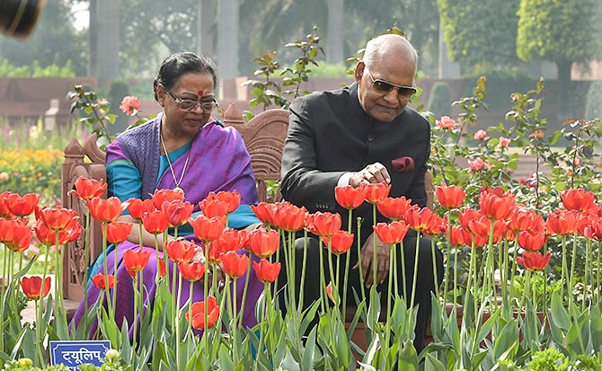 10 000 Tulips 135 Types Of Roses Welcome To The Mughal