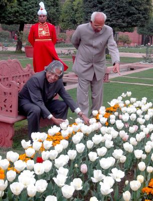 President Kalam inspecting the flowers in the Mughal Gardens