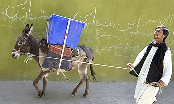 A donkey carries poll-related material in Afghanistan.