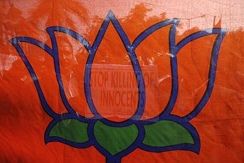 BJP supporters hold up the party's flag