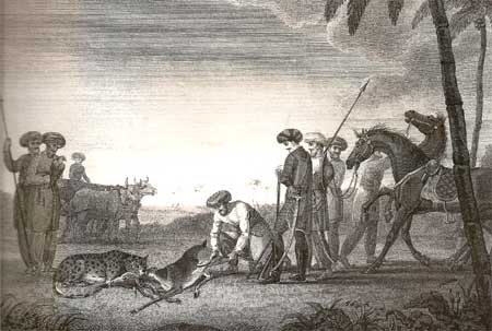Hunting the black buck with a cheetah, a sketch byJames Forbes in South Gujarat