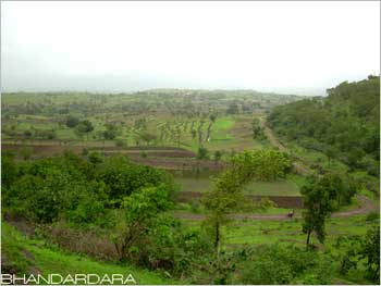 Lush green Bhandardara, a weekend destination in Maharashtra.