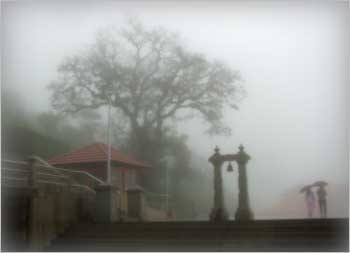 Rain drenched morning at Talakaveri, Coorg , Karnataka..