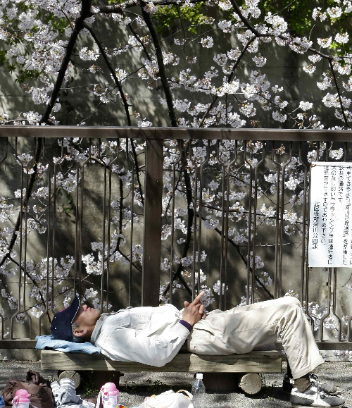 A man takes a nap underneath a tree at a park in Tokyo