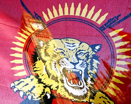 The LTTE flag being waved during a pro-Tamil demonstration in front of the Houses of Parliament in London