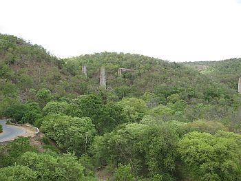 The Nallamala forest area