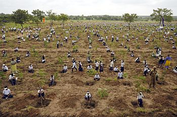 Schoolchildren plant trees during 'one day one lakh plantation programme' on outskirts of Hyderabad