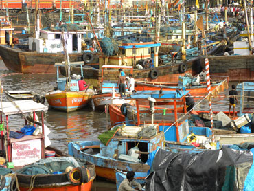 Catch from smaller fishing vessels may be affected