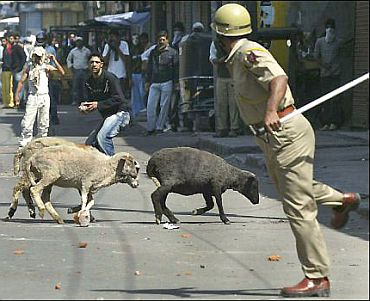 A policeman tries to evade stones thrown by protestors