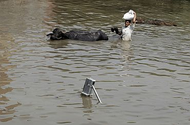A local resident carries belongings with his buffalo through a flooded road in New Delhi on Tuesday