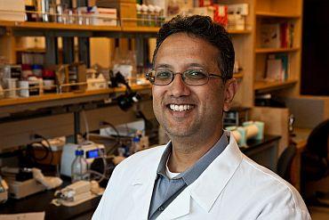 Dr Shuvo Roy