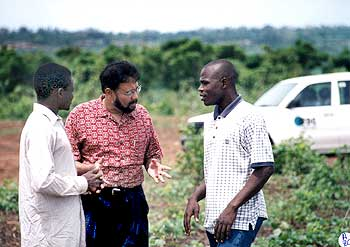 Dr Roy discusses planting with a farmer (left) and IFDC staffer in Togo