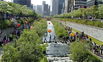 The transformed view of the once-polluted Cheonggyecheon stream