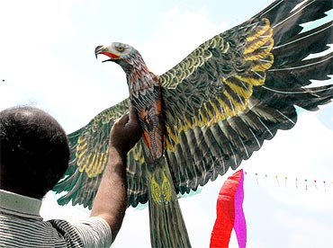 A teenager tries to fly a bird shaped-kite at the Bangalore kite festival