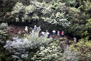 Members of the rescue team make their way to the crash site
