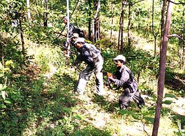A file photograph of Maoists in a Chhattisgarh jungle