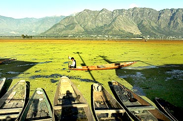 Still waters: The picturesque Dal Lake in Srinagar