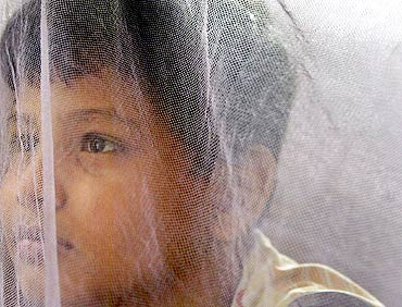 A boy sits inside a mosquito net at home after being discharged from a hospital in Kolkata