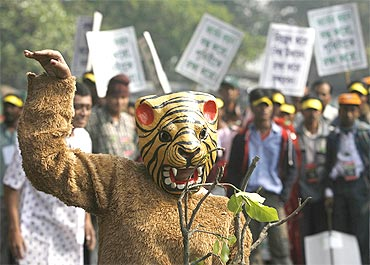 An activist in Kolkata protests against tiger poaching