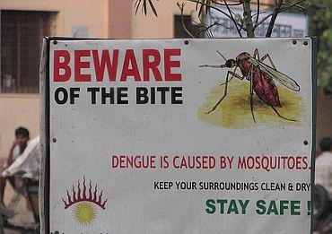 Delhi presses panic button as dengue plagues city