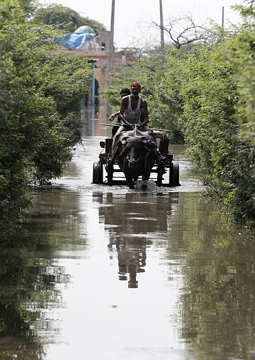 Local residents travel on a buffalo cart through a flooded road in New Delhi