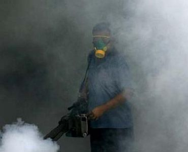 Dengue strikes Delhi: What you MUST know