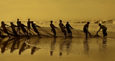 Fishermen work together to bring in the sea's harvest