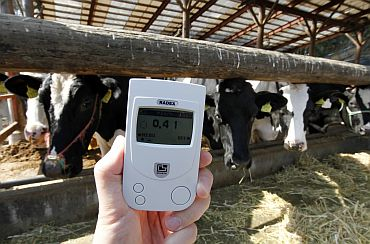 A radiation monitor indicates 0.41 microsieverts per hour at a dairy farm in Shinchimachi, Fukushima Prefecture