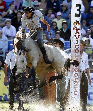 A gaucho rides an unbroken horse in Montevideo