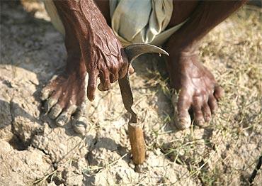 'WB govt apathetic towards welfare of farmers'