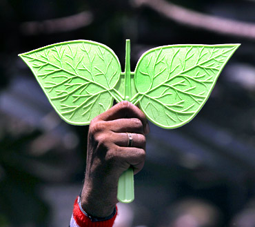 An AIADMK supporter holds the party's election symbol after it won the assembly polls in Tamil Nadu in front of Jayalalithaa's residence in Chennai