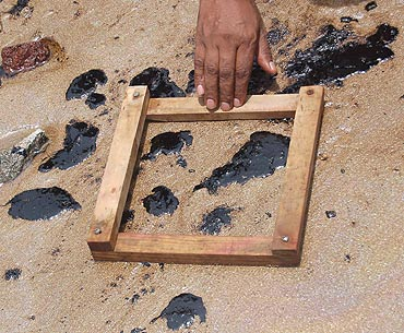 Team of experts from the National Institute of Oceanography study the oil spill at Juhu Beach