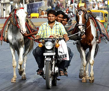 Horse owners on a motorbike as they pull their horses along a road in Ahmedabad