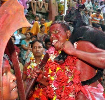 The possessed Deodhas even dance over upturned choppers and drink the blood of pigeons or goats
