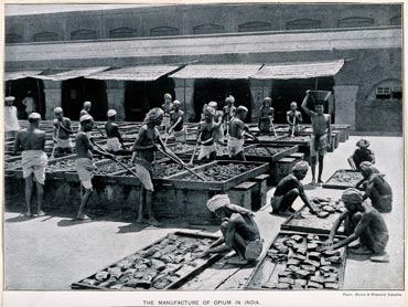Manufacture of opium in India