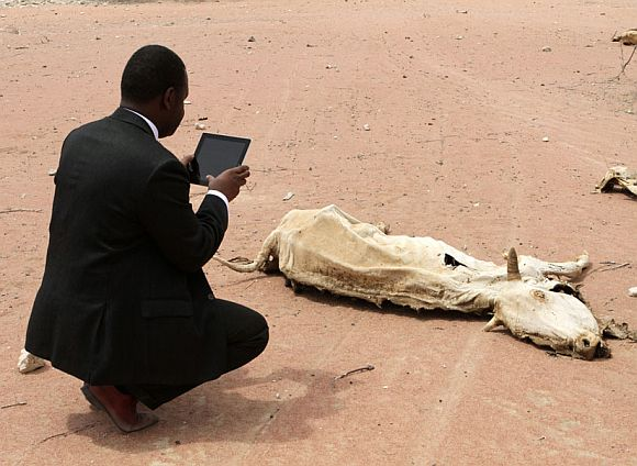 An aid worker using an iPad films the rotting carcass of a cow in Wajir near the Kenya-Somalia border, July 23, 2011