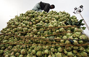 A labourer loads kohlrabi onto a vehicle at a wholesale vegetable market in Jammu