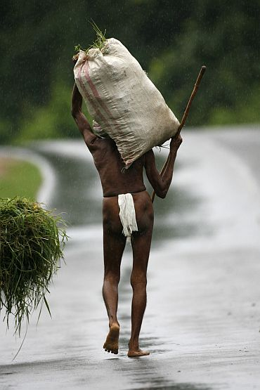 Rs 19k cr relief no relief? Maharashtra, K'taka top farmer suicide table