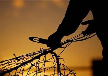 136 fishermen from Tamil Nadu were captured by Sri Lankan fishermen