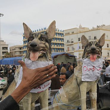 An anti-government protester puts his hand around toy dogs that has the name of Libyan leader Muammar Gaddafi and his son Saif al-Islam
