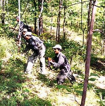 A file photo of an anti-Naxal operation