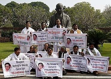 MPs hold posters demanding a separate Telangana outside the Parliament in February