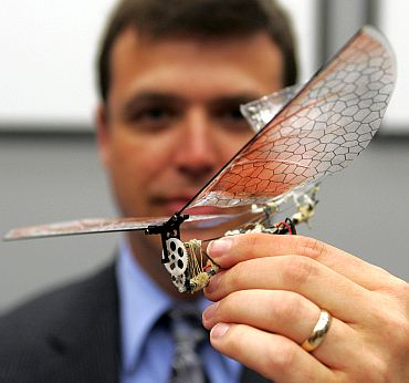 Dr Gregory Parker, Micro Air Vehicle team leader, holds a small winged drone that resembles an insec