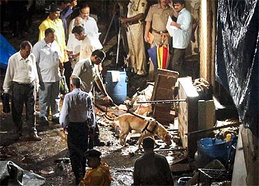 Police use a sniffer dog at the site of an explosion in Zaveri Bazaar