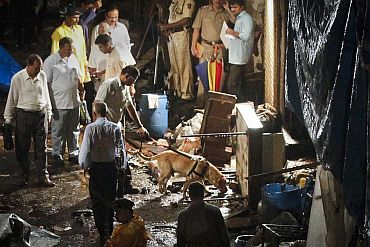 Police use a sniffer dog at Zaveri Bazaar after blasts