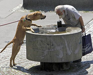A man and a dog drink water from a fountain during a sunny day in Prague as temperatures hovered over 28 degrees Celsius
