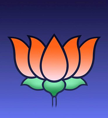 The lotus, the BJP party symbol