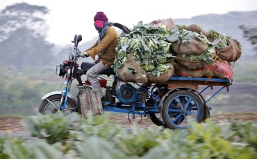 A farmer transports vegetables on an improvised tricycle towards a wholesale market in Kolkata