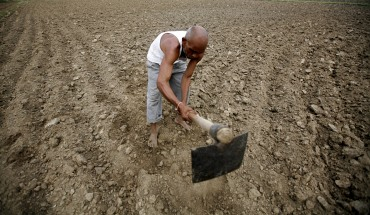 A farmer ploughs a field at a village