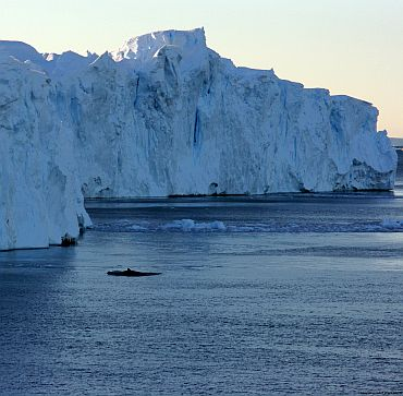 Why global sea levels are rising alarmingly